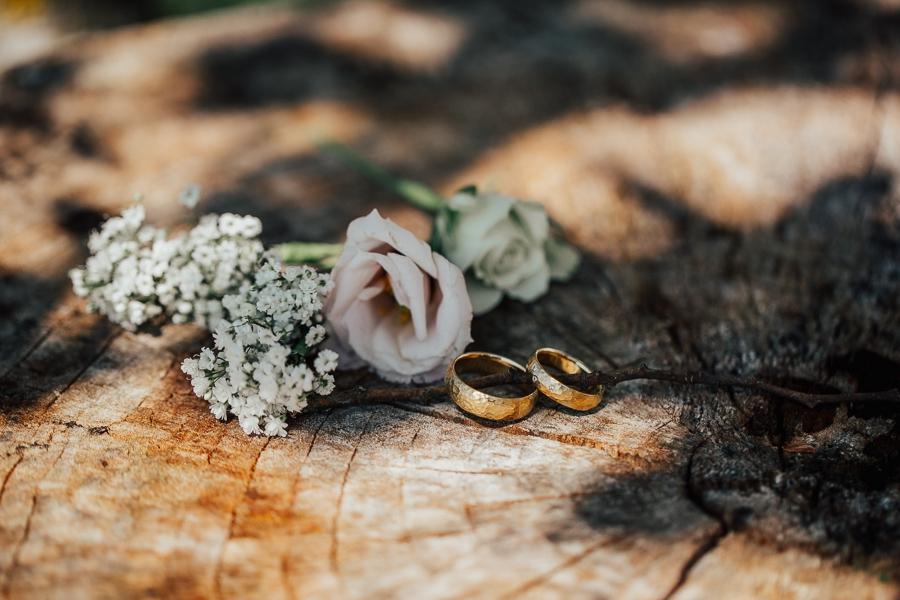 Edle Goldringe auf Holzstamm