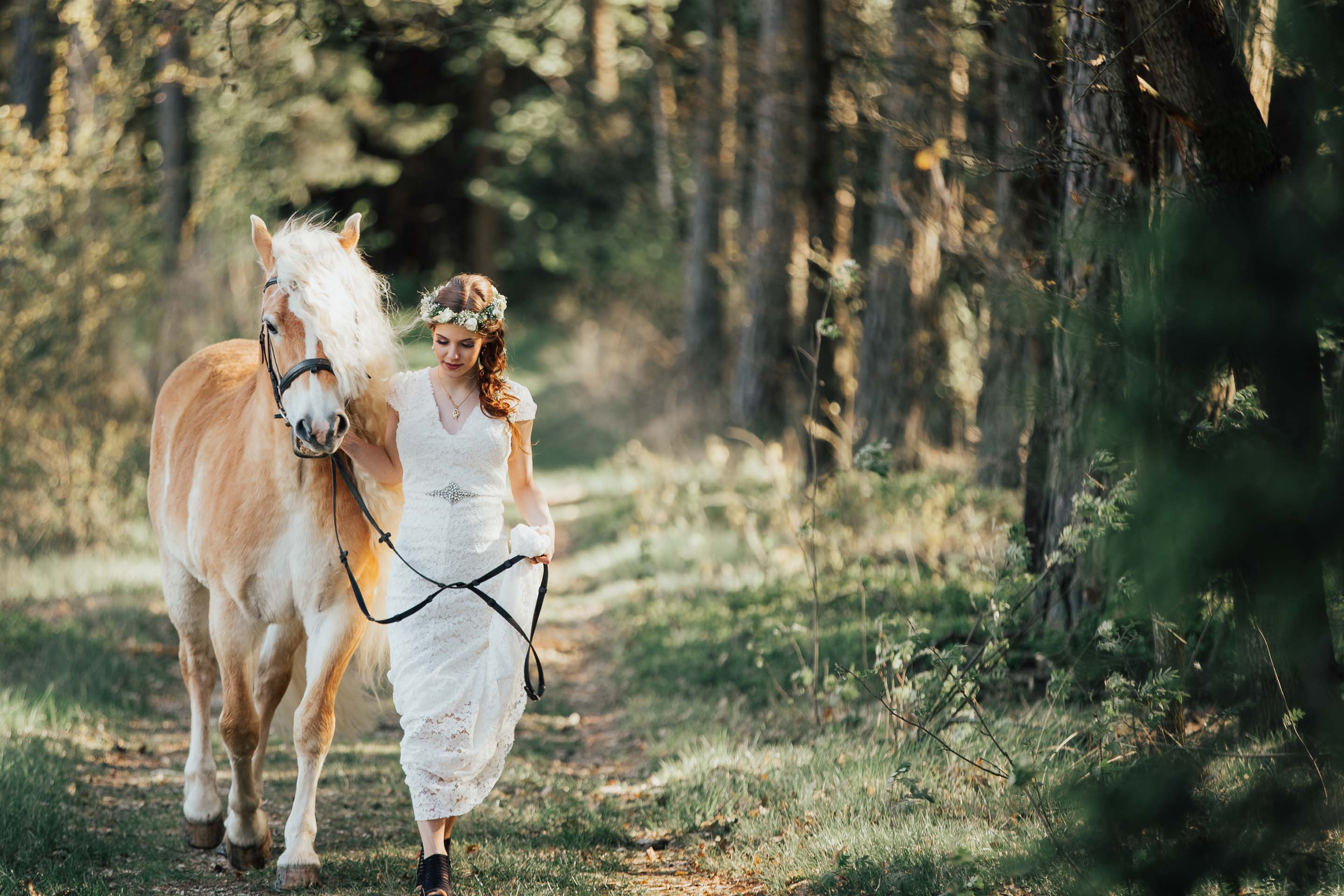 wedding-in-the-forest-horse