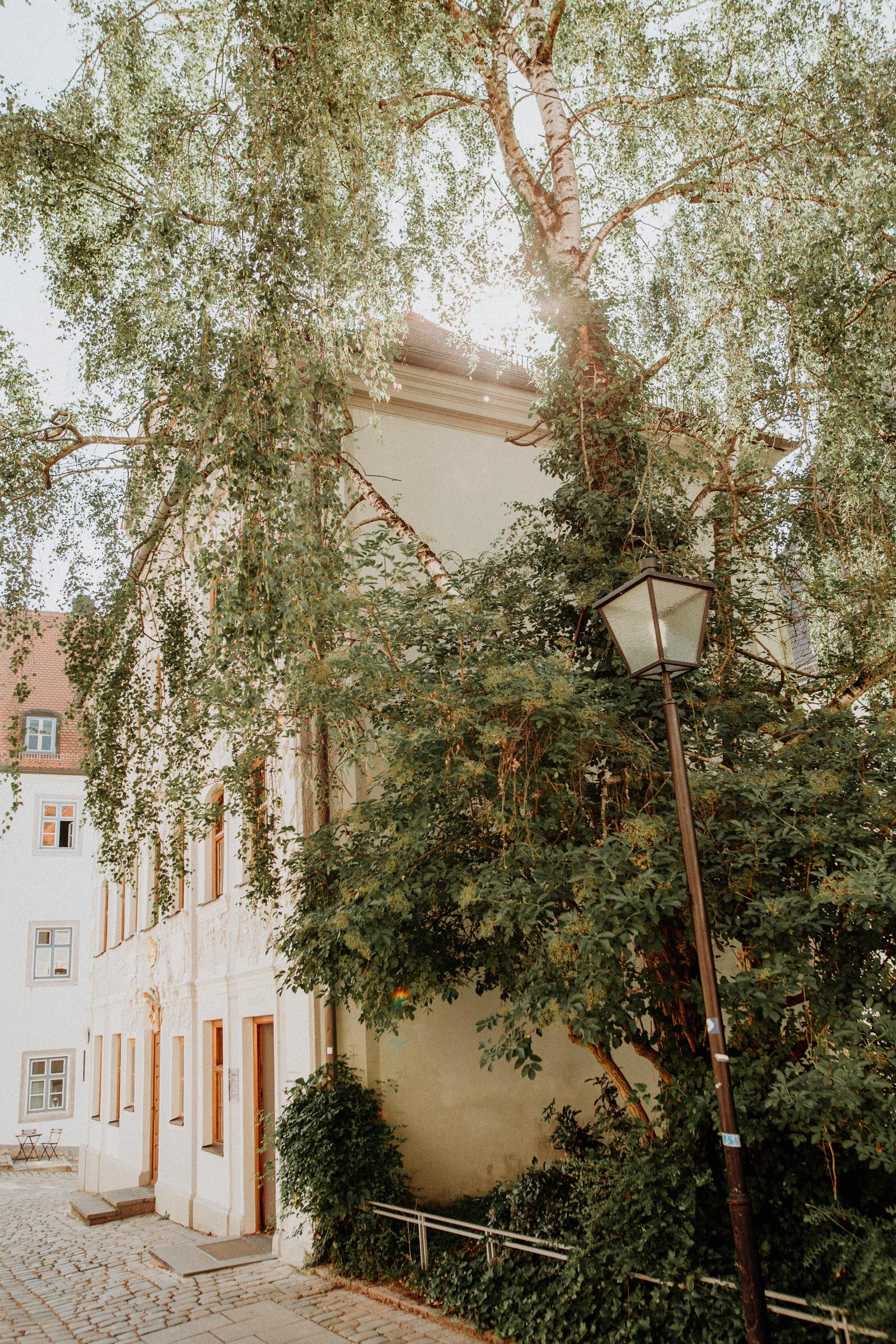 Standesamtliche Hochzeit in Freising, Weihenstephan 1